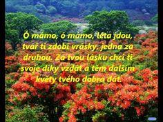 Jakub Smolík - Ó mámo Karel Gott, Karaoke, Texts, Youtube, Movie Posters, Outdoor, Music, Outdoors, Film Poster