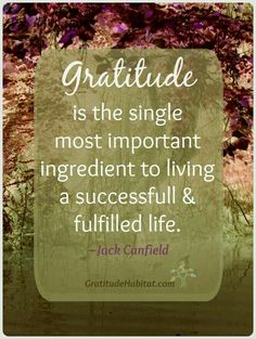 Xo love you all gratitude quotes, attitude of gratitude, positive quotes,. Attitude Of Gratitude, Gratitude Quotes, Positive Quotes, Practice Gratitude, Great Quotes, Me Quotes, Inspirational Quotes, Crush Quotes, Motivational Sayings