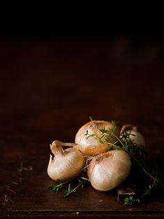 cipollini onions recipe