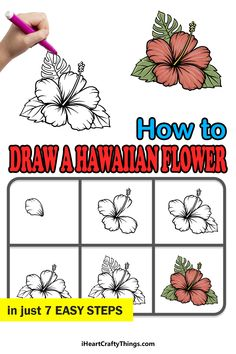 Hawaiian Flower Drawing, Hawaiian Flowers, Draw Flowers, The Incredibles, Drawings, Paint Flowers, Sketches, Drawing, Portrait