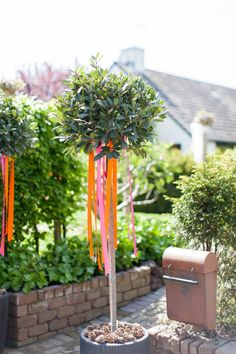 Great idea, those ribbons! - by Inge Kooiman Fotografie Indian Summer, Wind Chimes, Wedding Planning, Wedding Ideas, Summer Wedding, All The Way, Wedding Decorations, Bride, Outdoor Decor