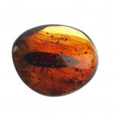 A Piece Of Natural Burmese Golden Brown Amber