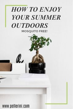 "Did you know that aside from mosquitoes being an obvious nuisance, they can also be a health threat?  It's no ""new"" news that mosquitoes have been known to transmit diseases such as Zika virus, Chikungunya virus, and West Nile virus.  It's super important to take precautions to help prevent mosquito bites, especially this time of year. #summerwithOrkin @Orkin #ad"