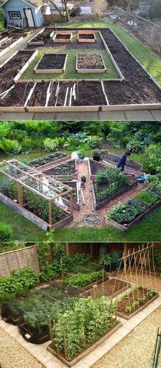 These vegetable garden designs require a little more space. Their layout allows . These vegetable garden designs require a little more space. Their layout allows you to grow different foods in different areas, and their Backyard Vegetable Gardens, Veg Garden, Outdoor Gardens, Vegetables Garden, Vegtable Garden Layout, Potager Garden, Raised Vegetable Garden Beds, Garden Path, Small Yard Vegetable Garden Ideas