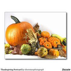 """Thanksgiving Postcard - """"Thanksgiving Postcard"""" My #Design My #stockphotography http://www.zazzle.com/thanksgiving_postcard-239876183598350496 #gift #Thanksgiving #Card #Postcard"""