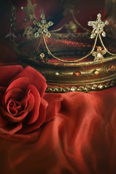 Ornate gold crown with red rose on red - Gold crown with red rose Crown Aesthetic, Queen Aesthetic, Gold Aesthetic, Lizzie Hearts, Gold Crown, Character Aesthetic, Fancy, Red Gold, Fairy Tales