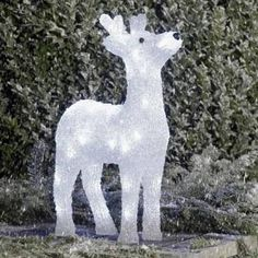Konstsmide Acrylic 38cm Reindeer with 40 White LED Lights. This reindeer has already spotted Santa and his sled in the sky!