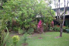 choza gardens @ www.mytropicalhut.com