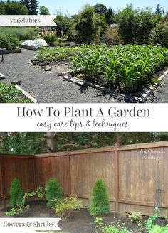 Tips and Techniques to Plant an Easy Care Garden - flowers and vegetables: http://anoregoncottage.com/how-to-plant-a-garden-the-easy-care-way/