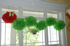Great tissue caterpillar for your classroom. Has link to Martha Stewart tutorial for making the balls.