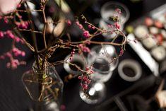 Garrafinhas de vidro