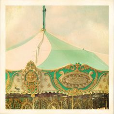 carousel 2009 by alice b. gardens, via Flickr