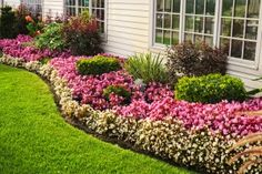 Flower ideas for front yard plant bed ideas garden flower bed ideas perennial flower bed designs . flower ideas for front yard flower garden Flower Bed Designs, Flower Garden Design, Small Backyard Gardens, Backyard Garden Design, Backyard Ideas, Indoor Garden, Tropical Backyard, Large Backyard, Small Backyards