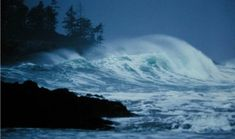 Stormwatcher package.  What a way to turn a negative into a positive! Seasonal Accommodation Packages | Wickaninnish Inn, Tofino, Canada