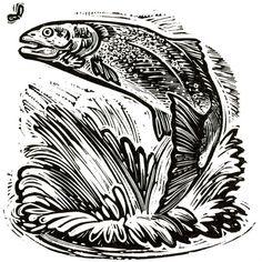 Ambition - wood-engravings at the Kenspeckle Letterpress
