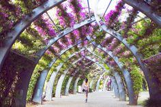 southbank via Gary Pepper Gary Pepper Girl, Temporary Structures, Mediterranean Garden, New Earth, Street Furniture, Australia Travel, Queensland Australia, Landscape Architecture, Architecture Design