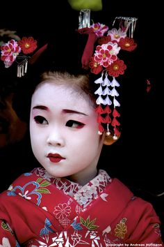 Photograph Maiko Apprentice by Andreas Hofmann on 500px