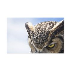 Great horned owl canvas print - animal gift ideas animals and pets diy customize