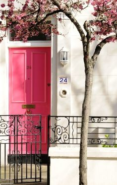 Pink door, but love the wrought iron fencing in front too