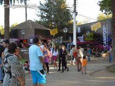 Cauquenesnet.com #DiaNoticias: Universidad de talca destaca las bondades de la en...
