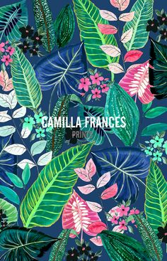 Camilla Frances Prints : Photo