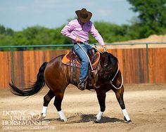 Downunder Horsemanship | Training Tip: Horses Don't Have Hard Mouths