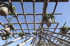 rising-canes-pavilion-penda-beijing-design-week-designboom-02