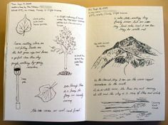 KENT TUT2. I like this example of visual journal. The images appear on page make me think about a long trip of the author. The leaf, tree or the light could be things what the author seen through her or his trip. In the next page, we can see the mountain and the day has changed, it mean the author went to the mountain. Therefore, the last page makes me think that this is a park.