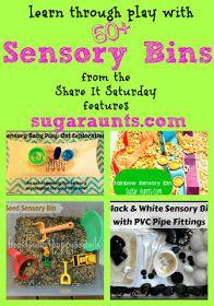 60+ sensory bins