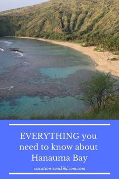 Everything you ever wanted to know about visiting Hanauma Bay. Maui Luau, Oahu Beaches, Hanauma Bay, Fun Activities To Do, Africa Travel, Hawaii Travel, Vacation Spots, Cool Places To Visit, Travel Guides