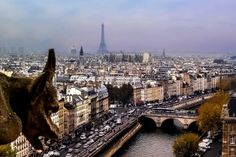 The gargoyle of Notre Dame and a Paris sunset