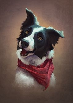 "nordeva: "" Pet portrait commission for mooberri on dA. This border collie was so fun to draw, he's adorable!"