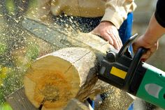Photo about Two lumberjacks at work, loggers. Image of rough, earmuffs, protect - 16355108 Best Chainsaw, Chainsaw Sharpener, Cordless Chainsaw, Electric Chainsaw, Photography Jobs, Big Tree, Outdoor Power Equipment, Lumberjacks, Things To Come