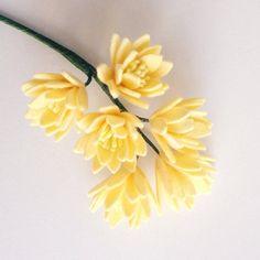 http://catelliyafloristbanjarnegara.blogspot.co.id/p/toko-bunga-banjarnegara-toko-bunga-kami.html