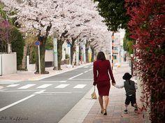 47 Tokyo Neighborhoods (part 2) - Japan Talk