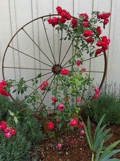 Criatividade no Jardim