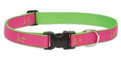 LupinePet Club 1' Bermuda Pink for Medium and Large Dogs >>> Hurry! Check out this great product : Collars for dogs