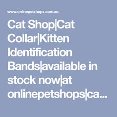 Cat Shop|Cat Collar|Kitten Identification Bands|available in stock now|at onlinepetshops|cat collar