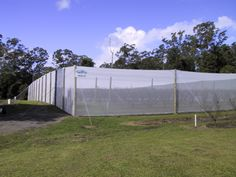 Fruit fly Net Covered Enclosure. Fruit Fly Net excludes Fruit fly. Saving fruit and vegetables for the growers enjoyment.