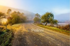 Buy road near forest in foggy mountains at sunrise by Pellinni on PhotoDune. road through the valley near the forest in foggy mountains at hot sunrise Foggy Mountains, My Photos, Stock Photos, Sunrise, Country Roads, Early Morning, Image, Fresh, Sunrises
