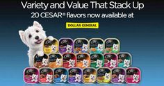Dollar General: Buy 6 CESAR Canine Cuisine Singles AND Get 1 FreeeCoupon