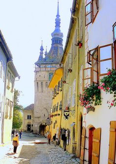Transylvania, Romania - Lovers of myth, superstition and awe will love a vacation to Transylvania. You can see Bran Castle which was supposed to be the home of Dracula. A trip to Transylvania Places Around The World, Oh The Places You'll Go, Places To Travel, Places To Visit, Around The Worlds, Saint Marin, Bósnia E Herzegovina, Romania Travel, Beaux Villages