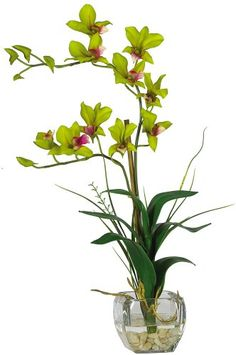 Silk plants direct african violet pack of 6 httpyourflowers nearly natural 1135 gr dendrobium with glass vase silk flower arrangement green http mightylinksfo