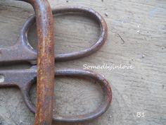 Alphabet Letter B Photograph Digital Snips by somadlyinlove, $1.75
