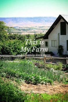This is My Farm (and a family lives there) www.theelliotthomestead.com