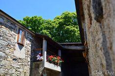 Casa Roán es un alojamiento de turismo rural situada la bella Comarca da Ulloa, en pleno centro de Galicia.  Nos encontramos en Lodoso (Monterroso, Lugo), junto al Camino de Santiago (tramo frnacés entre Portomarín y Palas de Rei).