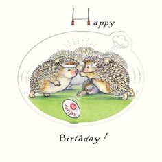 Greeting Card (GBCC5725) - Birthday - Hedgehogs Playing Rugby: Amazon.co.uk: Office Products
