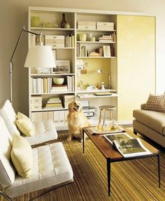 What's fun about psychotherapy offices is that they often mimic living rooms and home offices. In this design, I would remove one if the Barcelona chairs to designate where the therapist sits, and maybe flip the sofa with the chair so that the therapist sits closer to the built-in desk in the bookcase. Cute dog, but it would go, too.