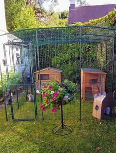 Omlet's Outdoor Rabbit Run is a large, secure rabbit enclosure that will look great in your backyard. This rabbit run will give your pets lots of space for exercise. Rabbit Cages Outdoor, Outdoor Rabbit Hutch, Indoor Rabbit Cage, Rabbit Pen, Pet Rabbit, Rabbit Garden, Rabbit Cage Diy, Diy Bunny Cage, House Rabbit