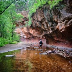 West Fork Trail, Sedona, Arizona — by Bernini. #Hiking the West Fork Oak Creek Trail in Sedona. A wonderful hike in the water to escape the heat. Parking is $10 for...